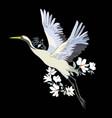 watercolor set of bird crane white stork vector image
