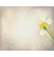 flowers paper vector image vector image