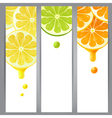 3 vertical banners vector image