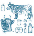 set of milk food dairy products yogurt and vector image