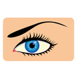 Close-up of beautiful eye vector image vector image