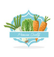 vegetables premium quality food vector image