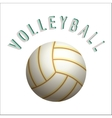 Volleyball ball icon vector image