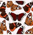 varicolored butterflies seamless vector image