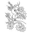 cartoon bird coloring page vector image