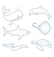 outlines of sea creatures vector image