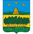 Temnikov City vector image
