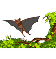 Bat flying over the tree vector image