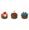 cakes set on a white background summer delicious vector image