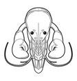 Crayfish logo isolated on white background vector image