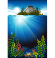 Scene with plants under the sea vector image