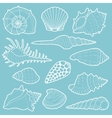 White sea shells icon set vector image