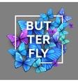 butterflies background design vector image