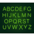 Eco alphabet Leaves Font Green letters from the vector image