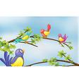 Colorful birds talking vector image vector image
