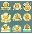 bananas labels vector image