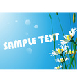 Sunflower Backdrop with Text Space vector image