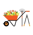 Cleaning leaves tools wheelbarrow vector image
