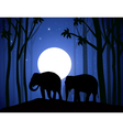 Elephants in Night Forest vector image