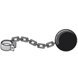 iron chain with shackle vector image