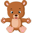 cute baby bears cartoon vector image
