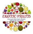 Exotic fresh fruits poster vector image