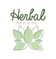 herbal medicine logo symbol vector image vector image