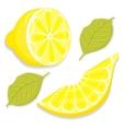 Slice and half of lemon vector image