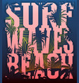 on the theme of surf and surfing grunge vector image