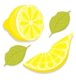 Slice and half of lemon vector image