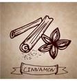 Hand drawn cinnamon sticks vector image