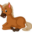 horse sitting cartoon vector image