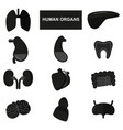 Silhouettes of human organs on white background vector image