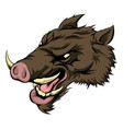 boar mascot character vector image vector image