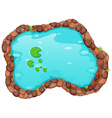 Small pond vector image
