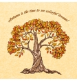 Autumn tree poster vector image