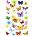 butterflies party vector image vector image