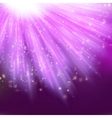 Star light with pink background EPS 10 vector image vector image