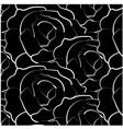 black roses background vector image