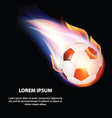 Isolated Fire Soccer Ball or Football Symbol vector image
