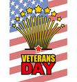 Veterans Day Salute honoring American heroes on vector image