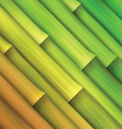 Bamboo pattern background vector image