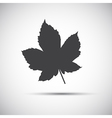 Maple leaf simple grey icon vector image