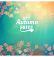 Autumn sale realistic Leaves typography poster vector image