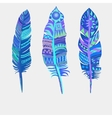 Bright colored feathers Tribal Ethnic vector image