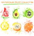 Watercolor fruit set vector image