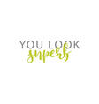 You look superb calligraphic inscription handmade vector image