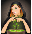 Witch brewing magic potion in cauldron vector image