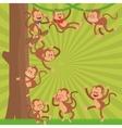 Monkey design animal and cartoon concept vector image