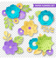 paper flowers compositions transparent set vector image